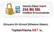 256bit SSL Güvenlik